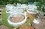 Cúpulas geodésicas experimentales de cristal. (Foto: STRI)