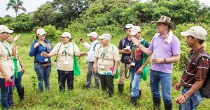 Foto portada: Científicos del Smithsonian del Proyecto de Reforestación con Especies Nativas. (Foto: panamaagro.com)