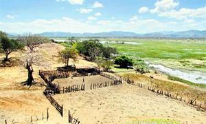 Foto portada: Región de Guanacaste. (Foto: UNA)