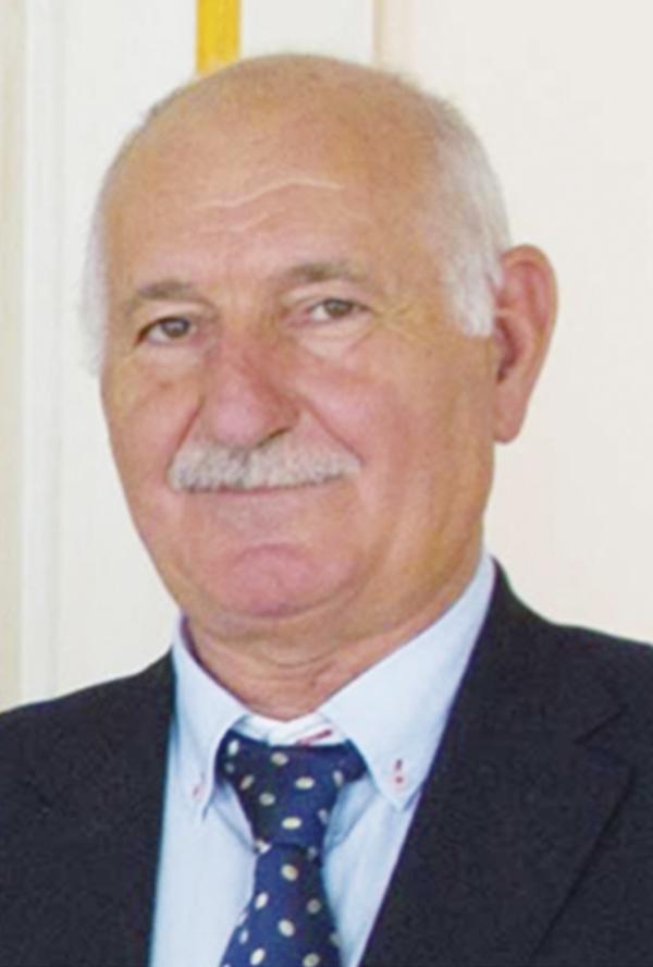 JOSÉ SERAFÍN MOYA. Profesor de Investigación en el Instituto de Ciencias de los Materiales (CSIC)