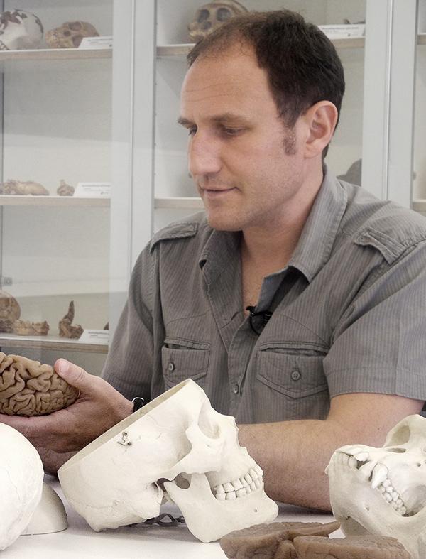 """EMILIANO BRUNER. Licenciado en Biología y doctor en Biología Animal. Investigador Responsable del Grupo de Paleoneurobiología del Centro Nacional de Investigación sobre Evolución Humana (CENIEH) de Burgos, y profesor adjunto en Paleoneurología en el Centro de Arqueología Cognitiva de la Universidad de Colorado (EE.UU.). Investiga sobre Neuroanatomía evolutiva y Evolución humana. Blogs: """"Paleoneurology"""", https://paleoneurology.wordpress.com/ y """"Antropológica Mente"""" (blog de """"Investigación y Ciencia"""") http://www.investigacionyciencia.es/blogs/medicina-y-biologia/80/posts"""
