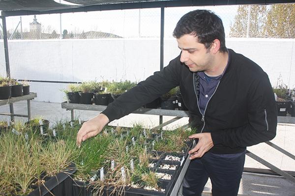 Eric Carvalho, en el invernadero del IRNASA.
