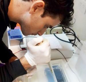 Un investigador trabaja en la detección de glifosato. Foto: Agencia CTyS.