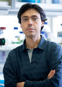 Felipe X. Pimentel-Muiños, investigador en el Instituto de Biología Molecular y Celular del Cáncer (Centro de Investigación del Cáncer, CSIC-Universidad de Salamanca).