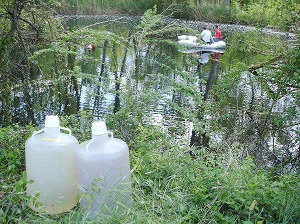 Recipientes con una muestra de agua de Banyoles, una de superficie (izquierda) y otra de aguas profundas (derecha) en la que se aprecia una coloración marronosa, debida a la presencia natural de bacterias fotosintéticas del azufre pigmentadas.