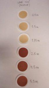 Diferentes bacterias fotosintéticas pigmentadas del azufre, enriquecidas en medios de crecimiento artificiales. Este tipo de bacterias es muy abundante en los lagos de Banyoles, si bien las especies que se consiguen cultivar en el laboratorio no son siempre las más exitosas en la Naturaleza.