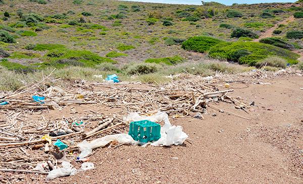 Detalle de la acumulación en la costa de la misma isla del Golfo de Corinto, donde puede observase los residuos plásticos.